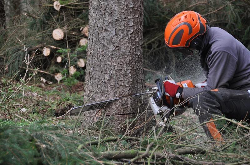 Choisir ses équipements de sécurité forestier