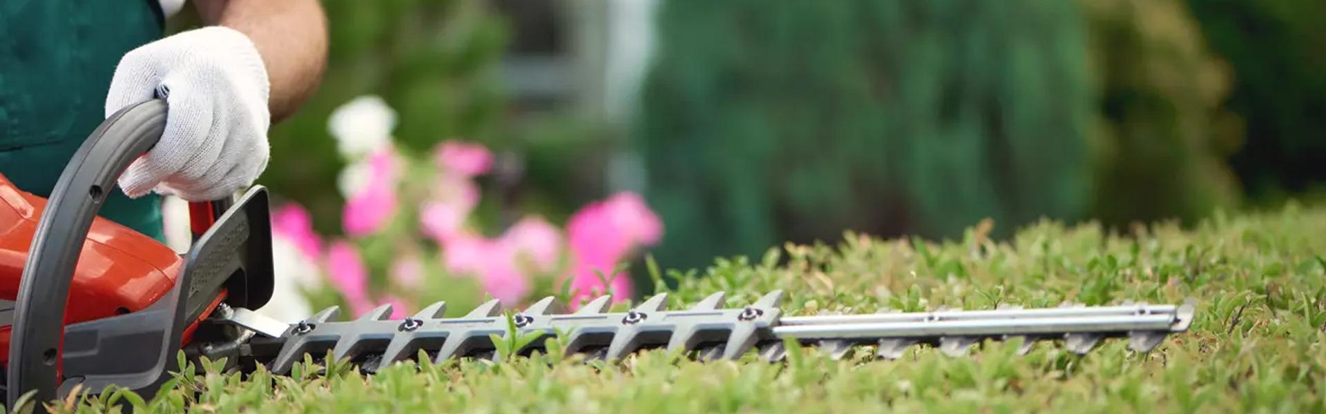 Les Outils Indispensables Pour Entretenir Son Espace Vert Facilement